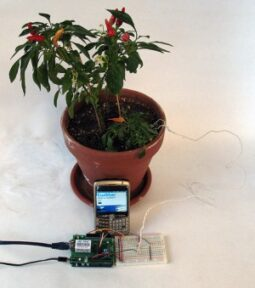 Now Your Plants Can Call or Twitter You