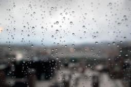 Rainy Holidays