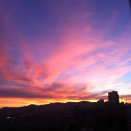 sunset in sf