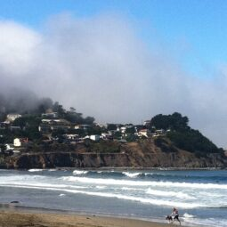 stoked morning surf with @maxkiesler. got some sweet lefts