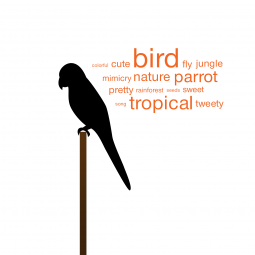 Birdy Tag Cloud