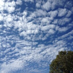 clouds and blue blue sky