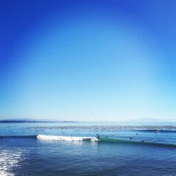 nonstop lefts today