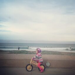 ride on wheels or waves