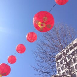 lunar new year in union square