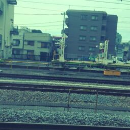 shonan-shinjuku train headed south