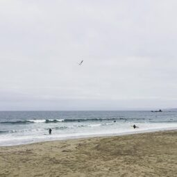 tiny lefts this morning