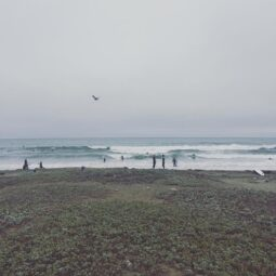enjoyed the fog, onshore winds, and jumbly waves