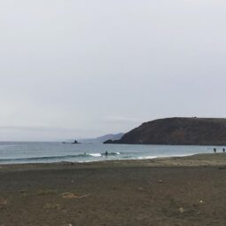 gray, rainy morning and for forty minutes, @maxkiesler and I were the only ones in the water catching tiny waves