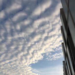 soma sky