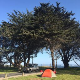 home for tonight: view of bodega bay and epic trees