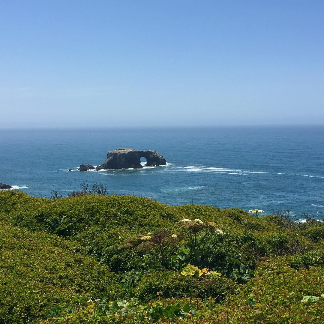 gorgeous Sonoma coast