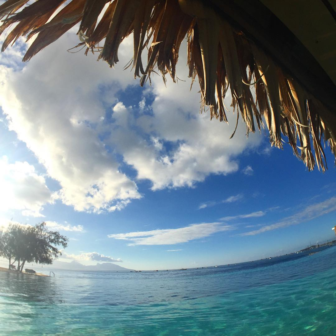 water world: infinity pool to ocean @tahititourisme