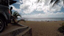 sandy beach on christmas