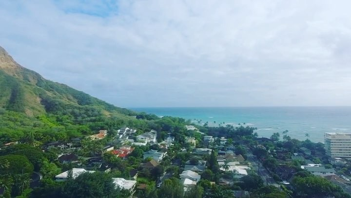 majestic diamond head fly by