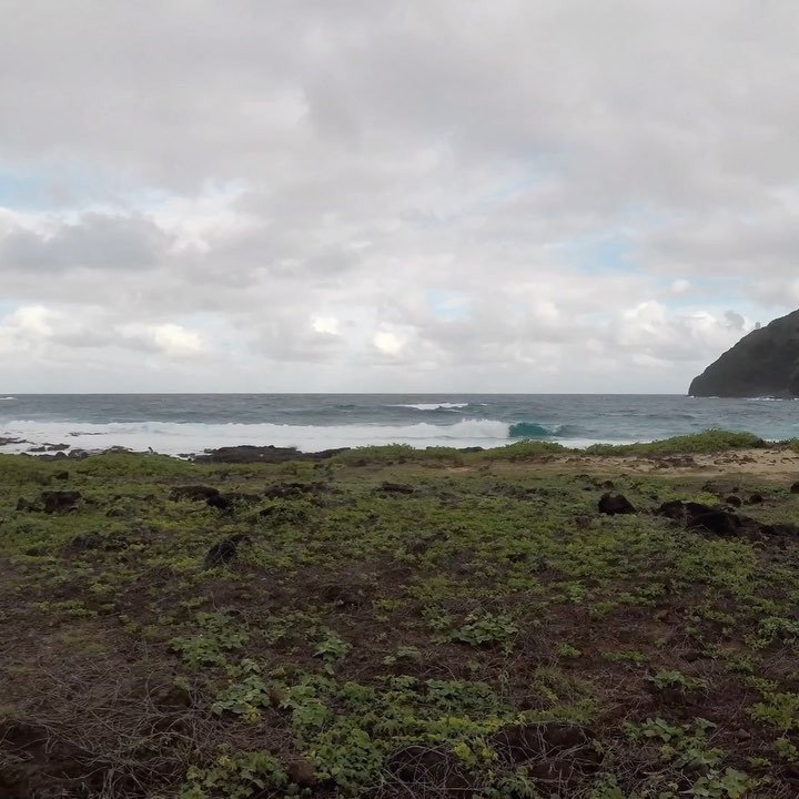 walking around makapu'u