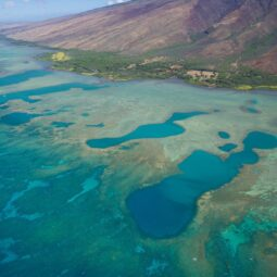 molokai reef from above @sunshinehelicopters