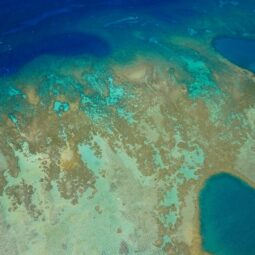 another one of the molokai reef from above @sunshinehelicopters