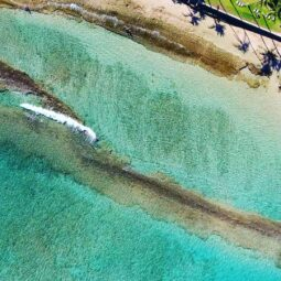 reef to sand  @hawaiimagazine @gohawaii