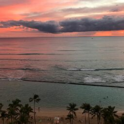 waikiki hues. hard to believe it's real