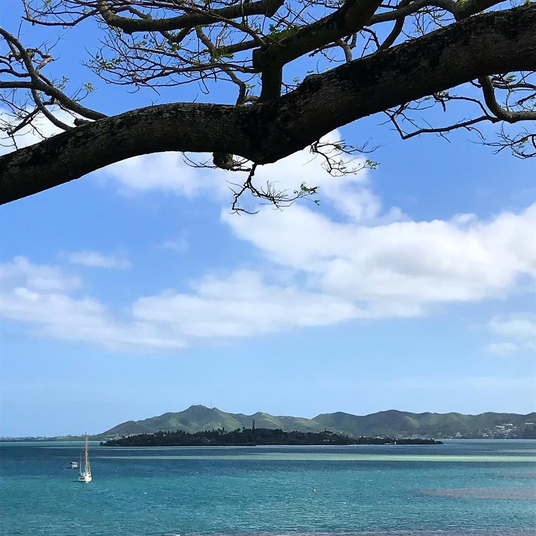 looking out at the kaneohe sand bar from he'eia state park
