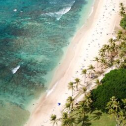 here in Waikiki, find yourself a spot on the sand between the ocean and the palm trees