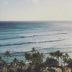 back in waikiki for some lovely sw swell and aloha