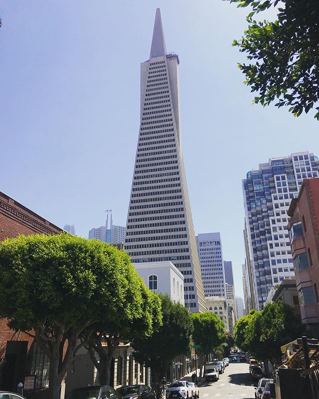 #transamericabuilding #sf #sanfrancisco