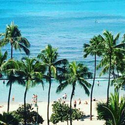 quintessential waikiki beach